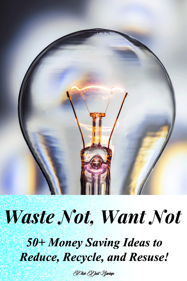 want not waste not essay