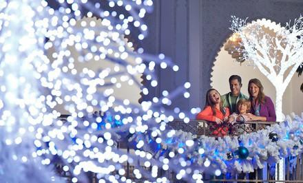 Busch Gardens- Christmas Town Deal