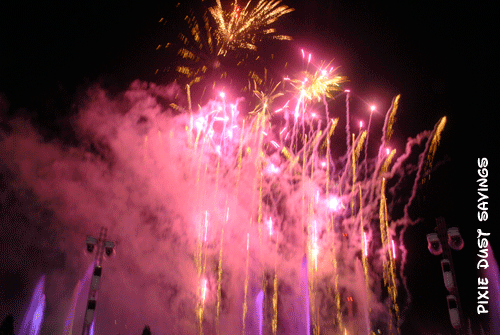 seaworld-christmas-event-fireworks-2