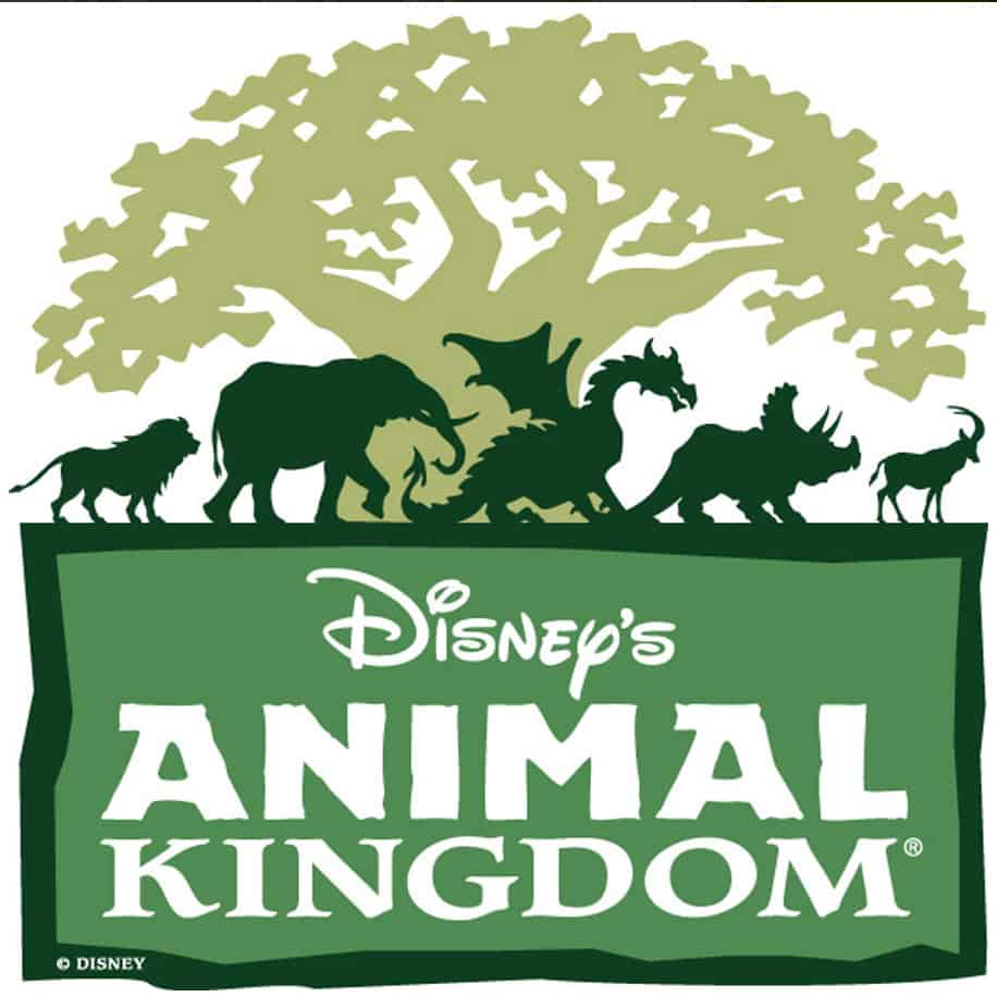 New Attractions at Animal Kingdom