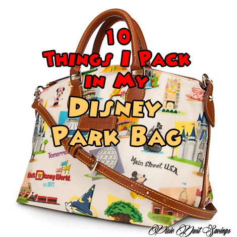 10 Things I Pack in My Disney Park Bag