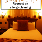 ALLERGY-CLEANING