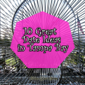 10-Great-Date-Ideas-in-Tampa-Bay