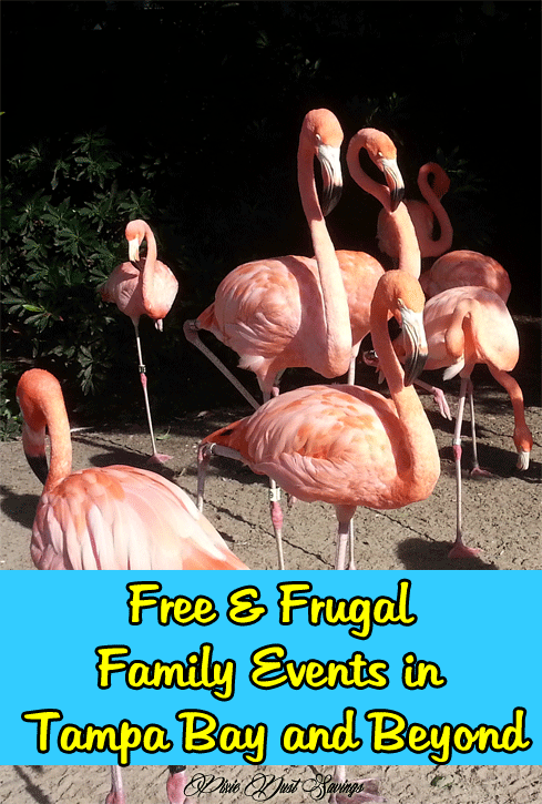 Free & Frugal Family Events in Tampa Bay and Beyond