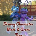 Disney-Character-Meet-&-Greet-Tips