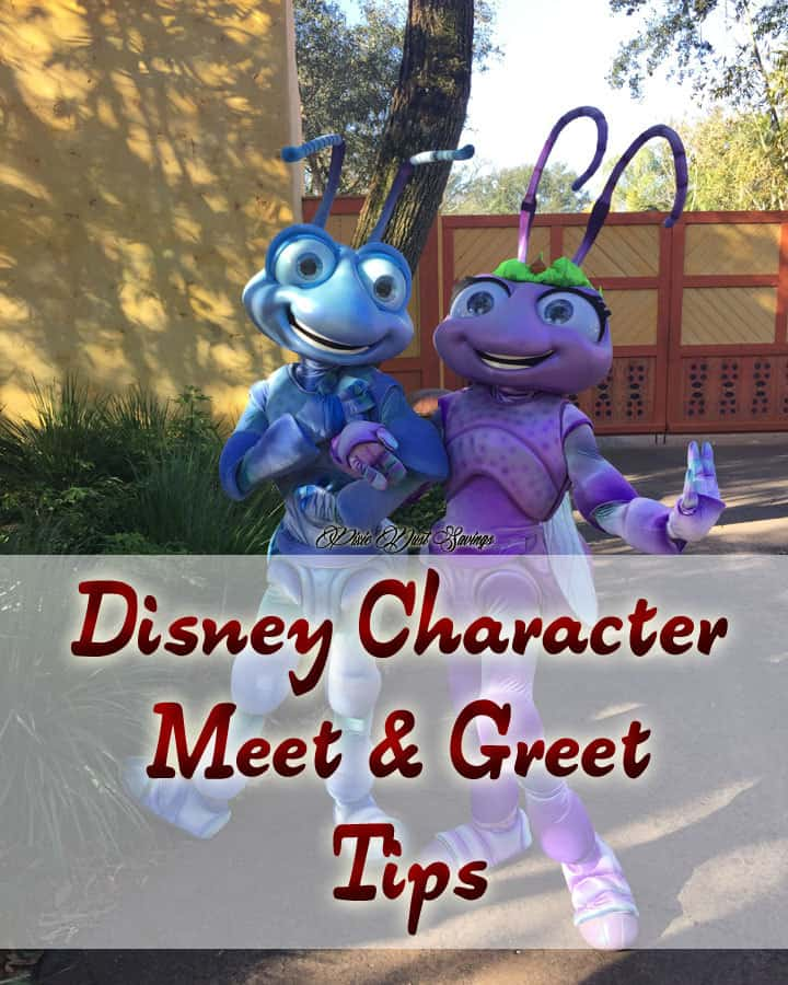 Disney-Character-Meet-&-Greet-Tips