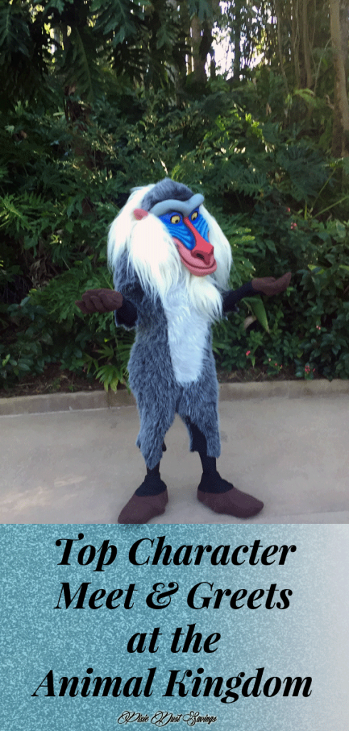 Don't Miss these Top Character Meet & Greets at the Animal Kingdom