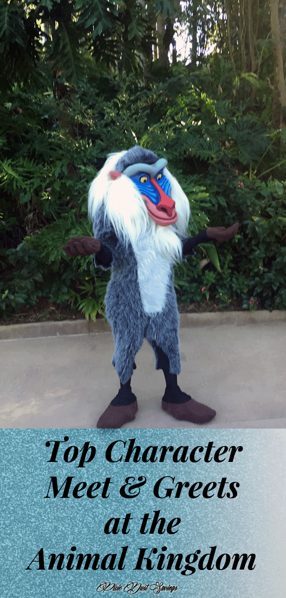 Character Meet & Greets at the Animal Kingdom