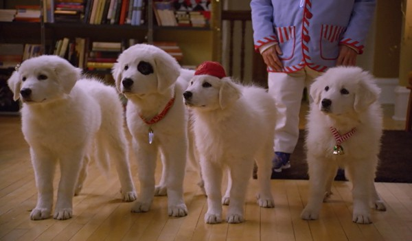 santa-paws-2-the-santa-pups-dogs-great-pyrenees-puppies-review-2