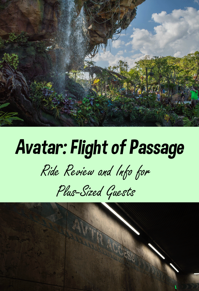 Avatar Flight of Passage Review and Info for Plus-Size Guests